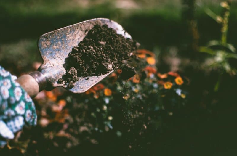 Potager - préparer la terre