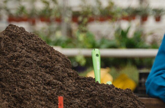 Lombricompostage et compostage : quelles différences ?