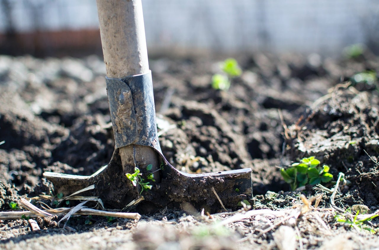 Quel mélange de terre utiliser pour un carré potager ?